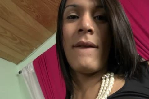 latina Sthis chabmale dilettante sheboy anal Rammed